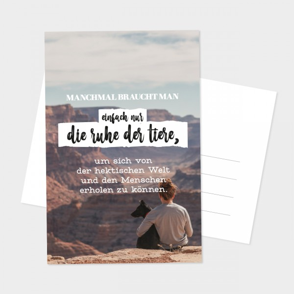"Postkarte ""RUHE DER TIERE"""