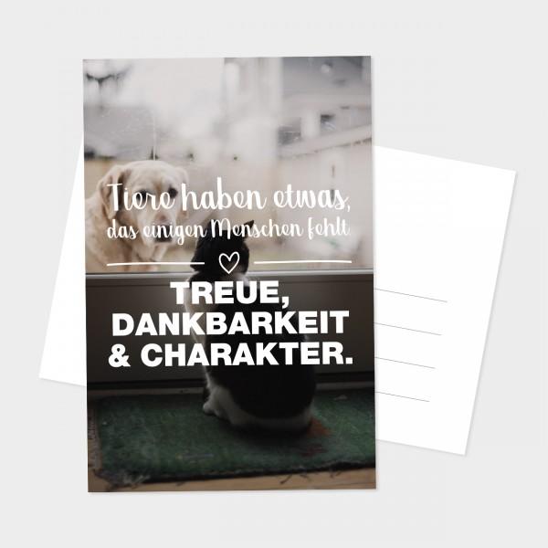 "Postkarte ""TIERE"""