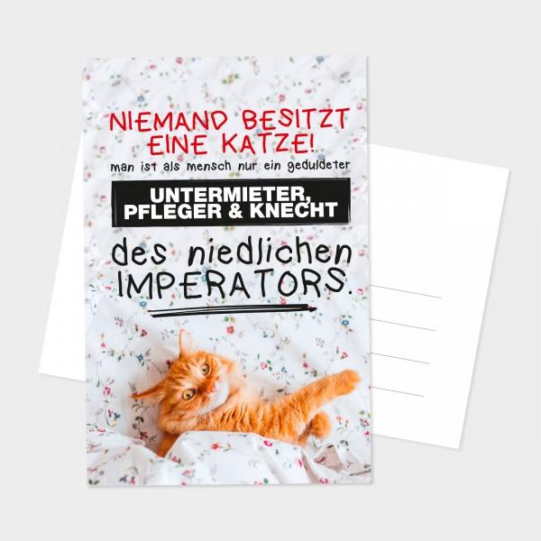 """Postkarte """"EINE KATZE"""""""